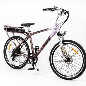 RooDog Tourer electric bike side