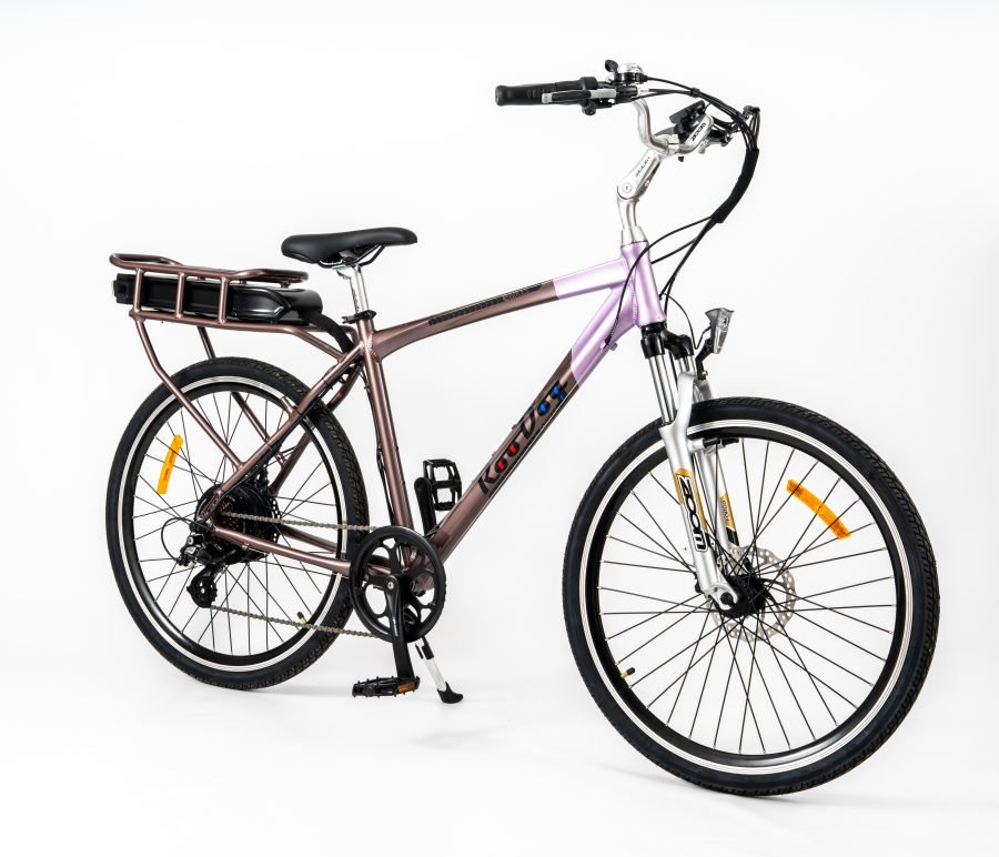 RooDog Tourer electric bike side