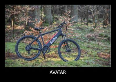 RooDog Avatar Crossbar Electric bike