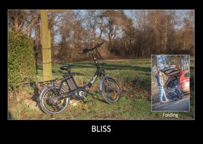 RooDog Bliss Foldable Electric Bike