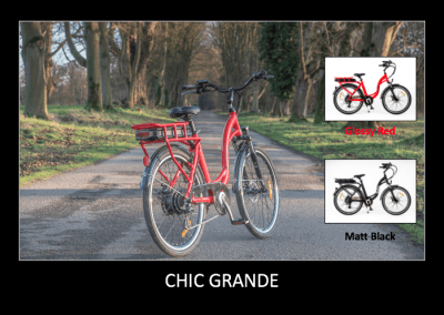 RooDog Chic Grande electric bike