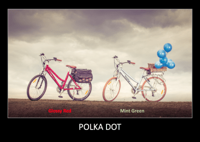 RooDog Polka dot electric bikes